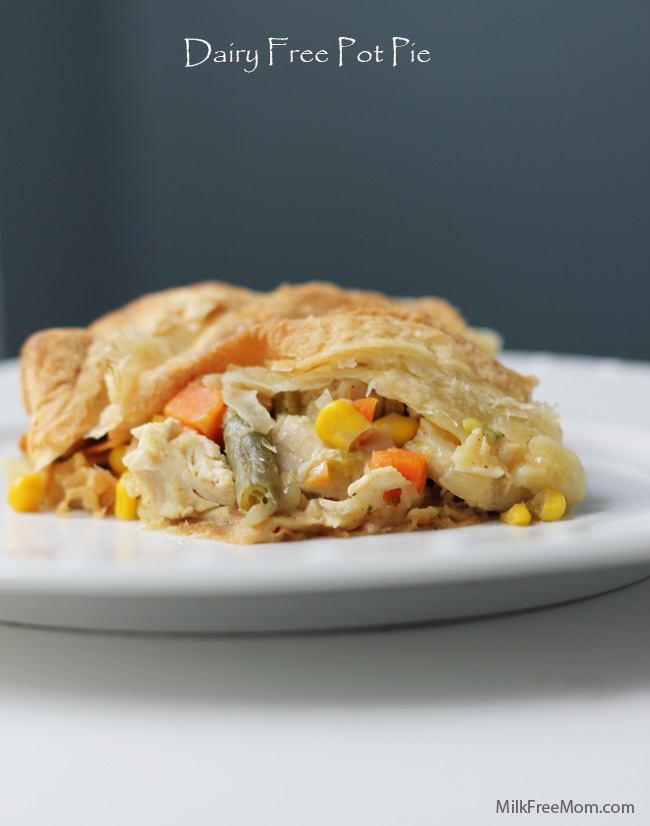 dairy free pot pie