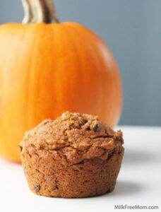 Vegan Pumpkin Maple Muffins with Raisins