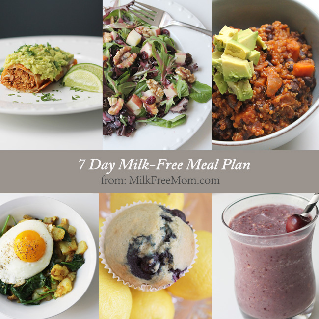 Meal Plans  Milk Free Mom