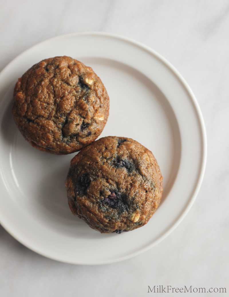 Dairy Free Whole Wheat Blueberry Muffin