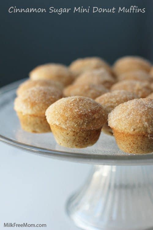 Cinnamon Mini Donut Muffinss